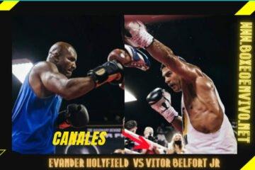 Canal que pasa la pelea Holyfield vs Belfort